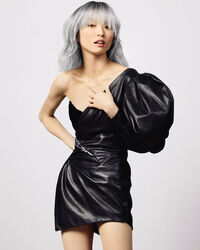 Create Silver Shades with L'Orèal Professionnel Hair Color