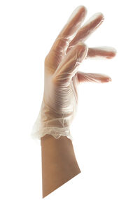 Pro Disposable Vinyl Gloves - 100 ct.
